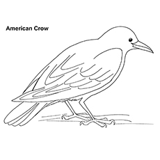 Crow coloring #4, Download drawings
