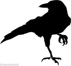 Raven svg #971, Download drawings