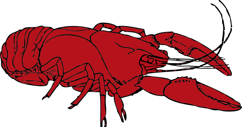 Crustacean clipart #6, Download drawings