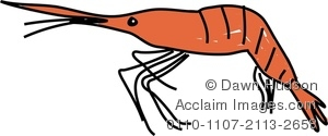 Crustacean clipart #16, Download drawings