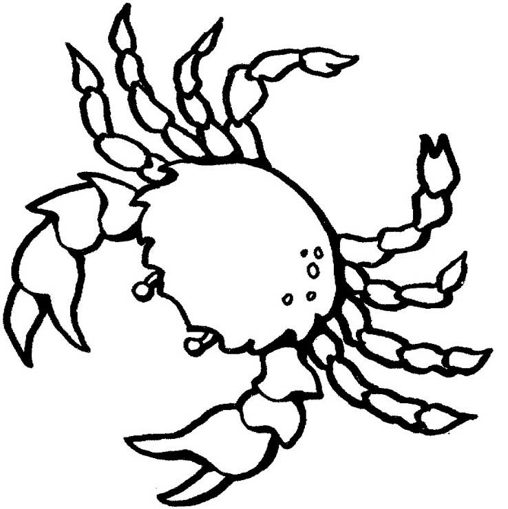 Crustacean coloring #16, Download drawings