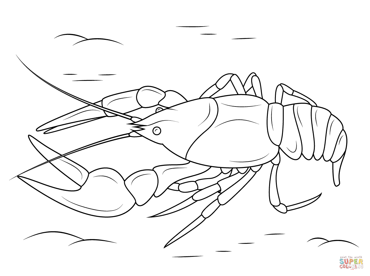 Crustacean coloring #15, Download drawings