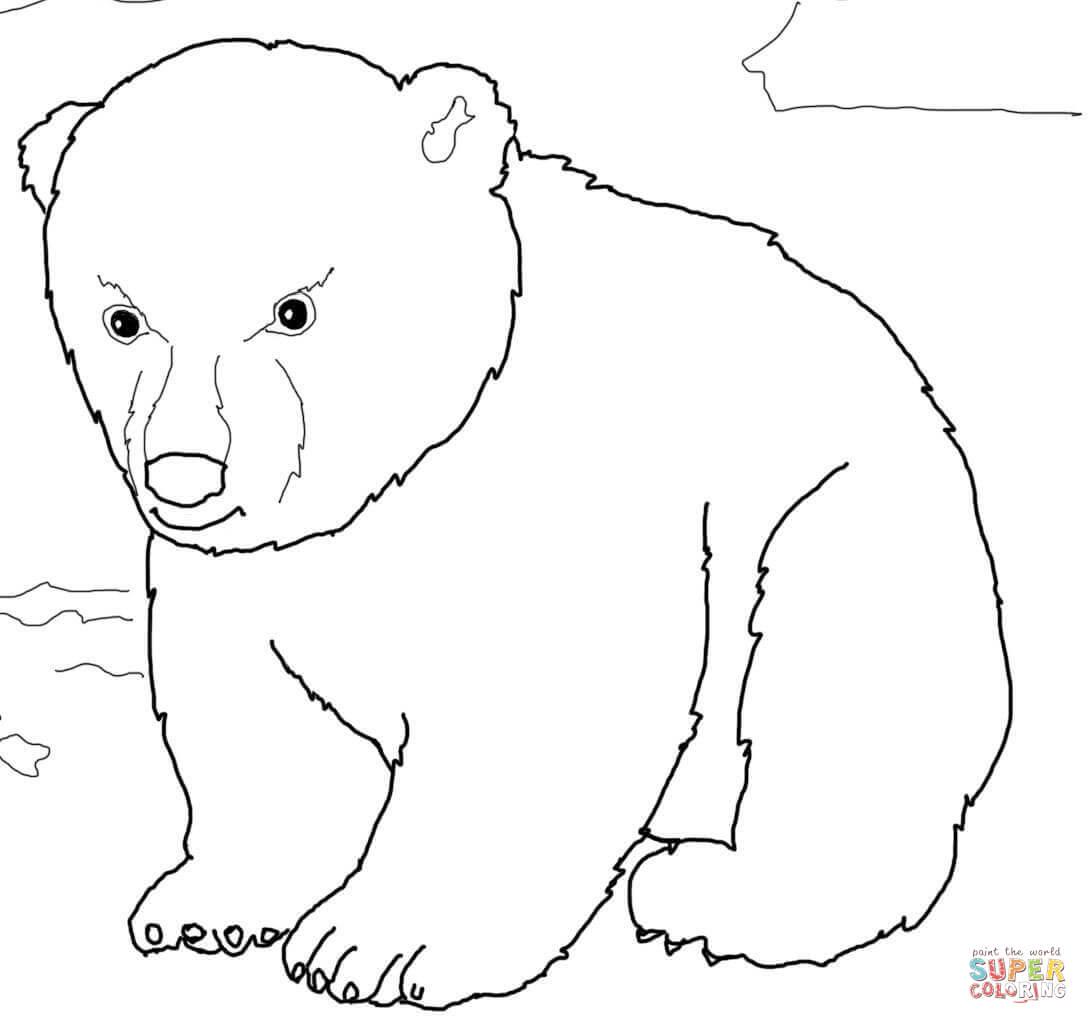 Cub coloring #12, Download drawings