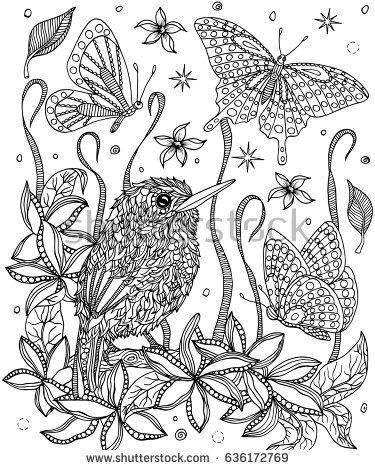 Cuban Tody coloring #7, Download drawings
