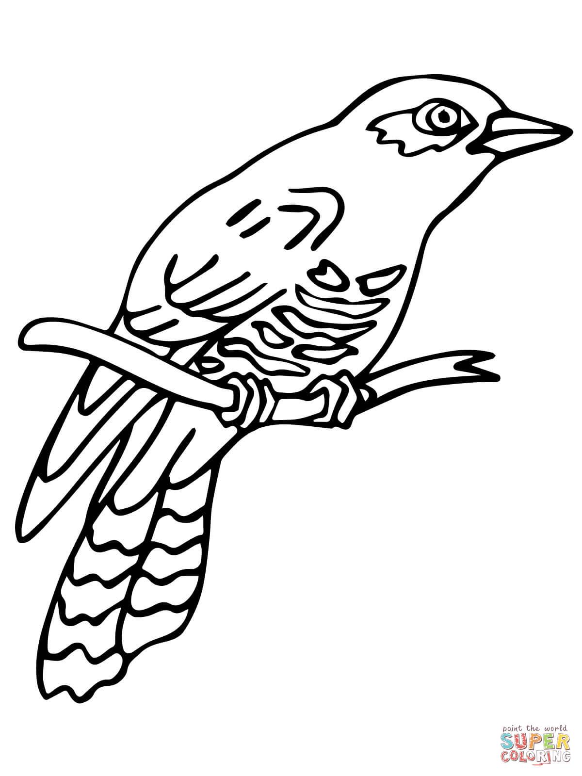 Cuckoo coloring #13, Download drawings