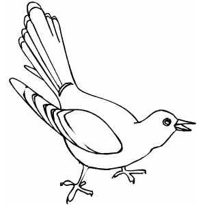 Cuckoo coloring #19, Download drawings
