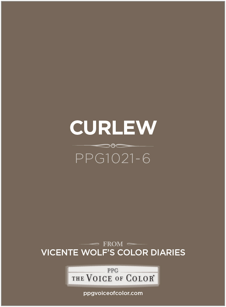 Curlew coloring #1, Download drawings