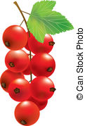 Currants clipart #17, Download drawings