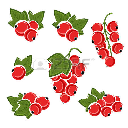 Currants clipart #8, Download drawings