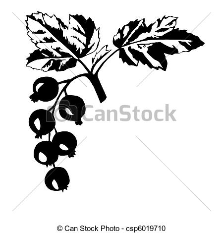 Currants clipart #5, Download drawings