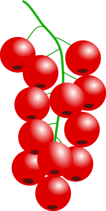 Currants clipart #19, Download drawings
