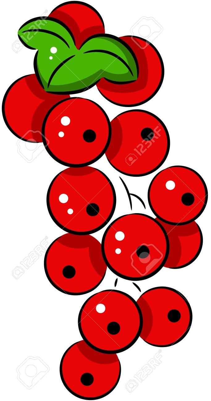 Currants clipart #15, Download drawings