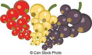Currants clipart #16, Download drawings