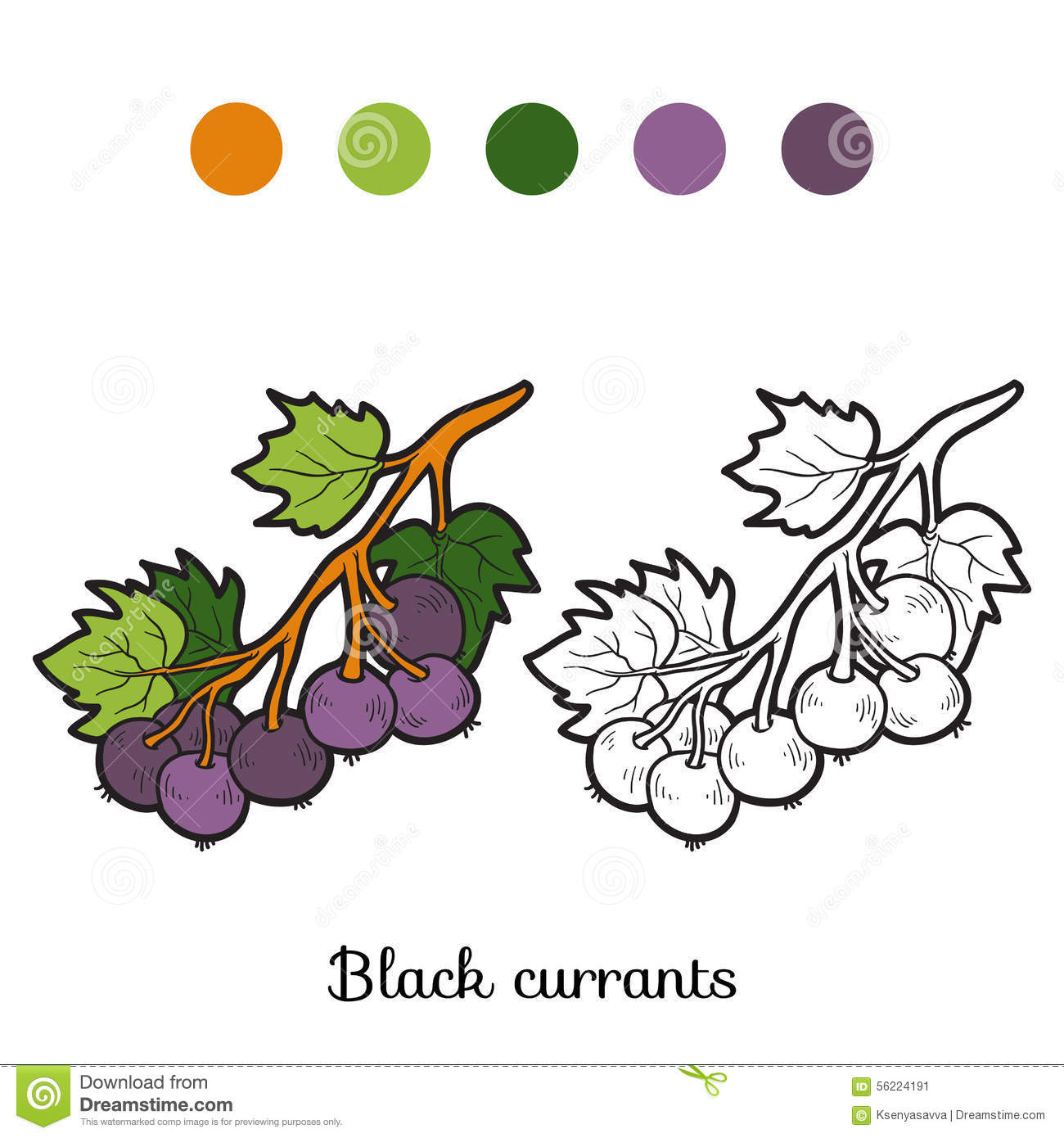 Currants coloring #13, Download drawings