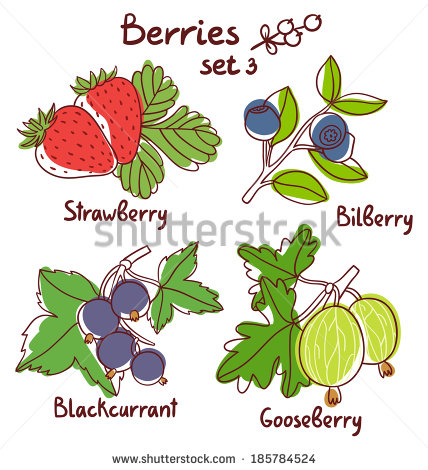 Currants svg #13, Download drawings
