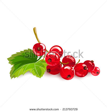 Currants svg #16, Download drawings