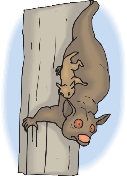 Cuscus svg #18, Download drawings