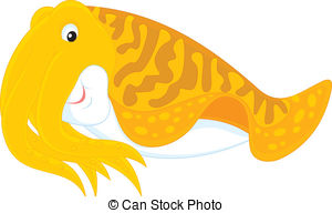 Cuttlefish clipart #18, Download drawings