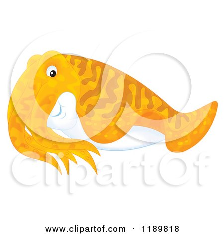 Cuttlefish clipart #1, Download drawings