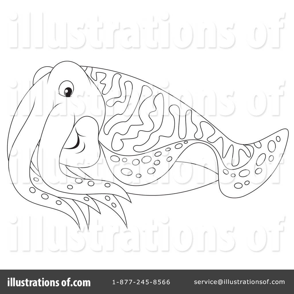 Cuttlefish clipart #8, Download drawings
