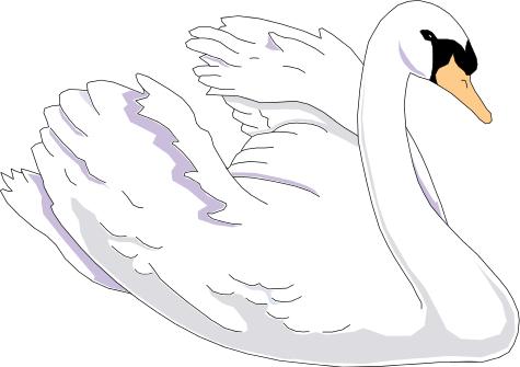 Mute Swan clipart #15, Download drawings