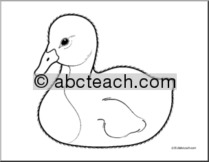 Cygnet clipart #4, Download drawings