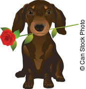 Dachshund clipart #11, Download drawings