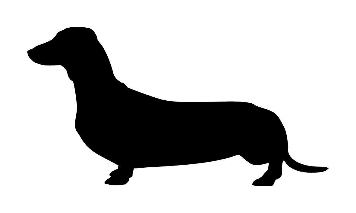 Dachshund svg #8, Download drawings