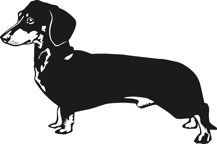 Dachshund clipart #5, Download drawings