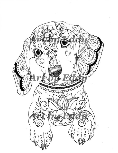 Dachshund coloring #2, Download drawings