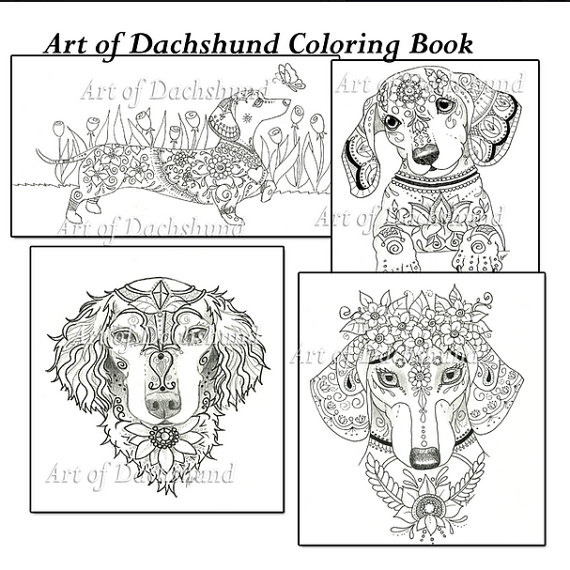 Dachshund coloring #12, Download drawings
