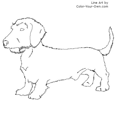 Dachshund coloring #11, Download drawings