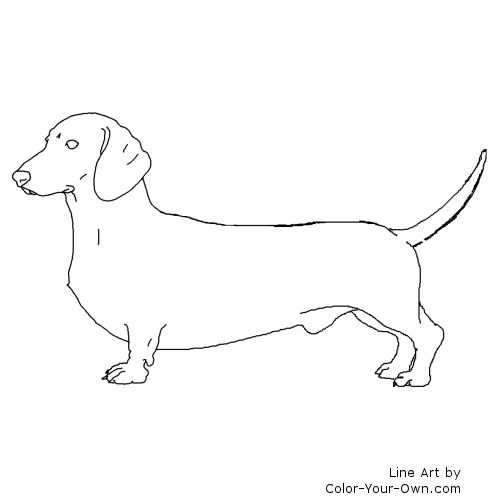 Dachshund coloring #18, Download drawings