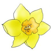 Daffodil clipart #1, Download drawings