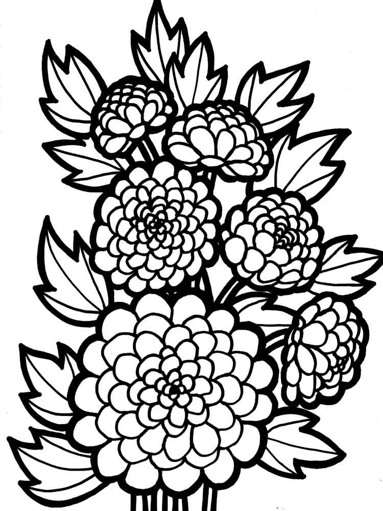 Dahlia coloring #7, Download drawings