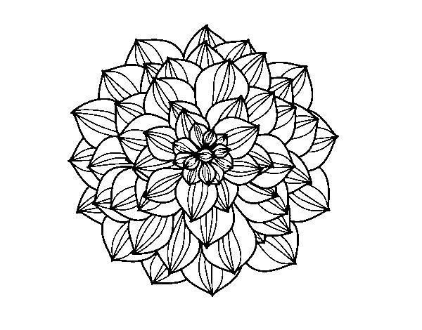 Dahlia coloring #16, Download drawings