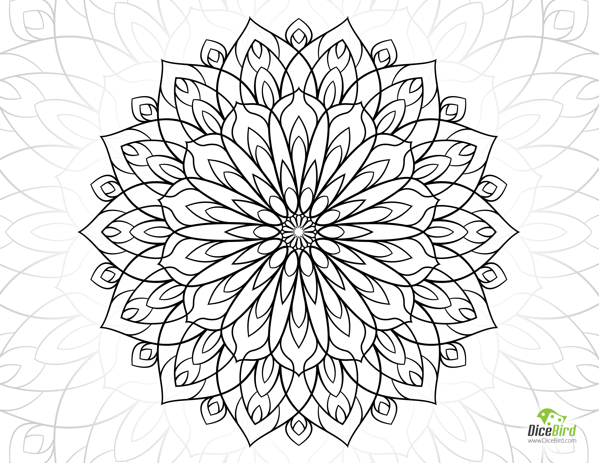 Dahlia coloring #1, Download drawings