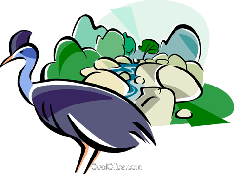 Daintree Rainforest clipart #13, Download drawings
