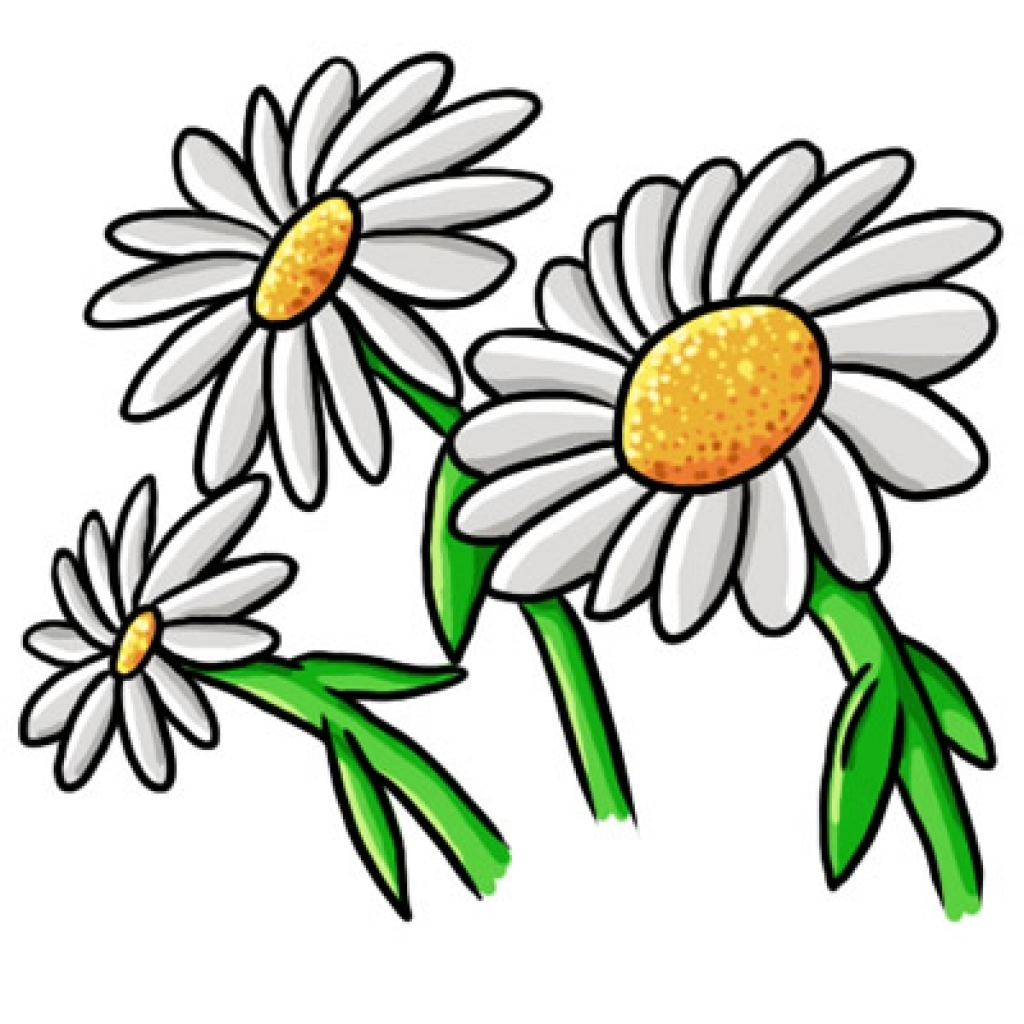 Daisy clipart #6, Download drawings