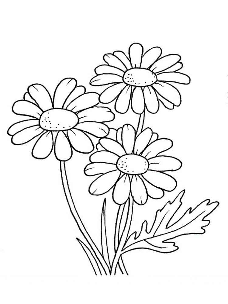 Daisy coloring #5, Download drawings