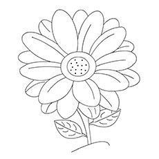 Daisy coloring #19, Download drawings