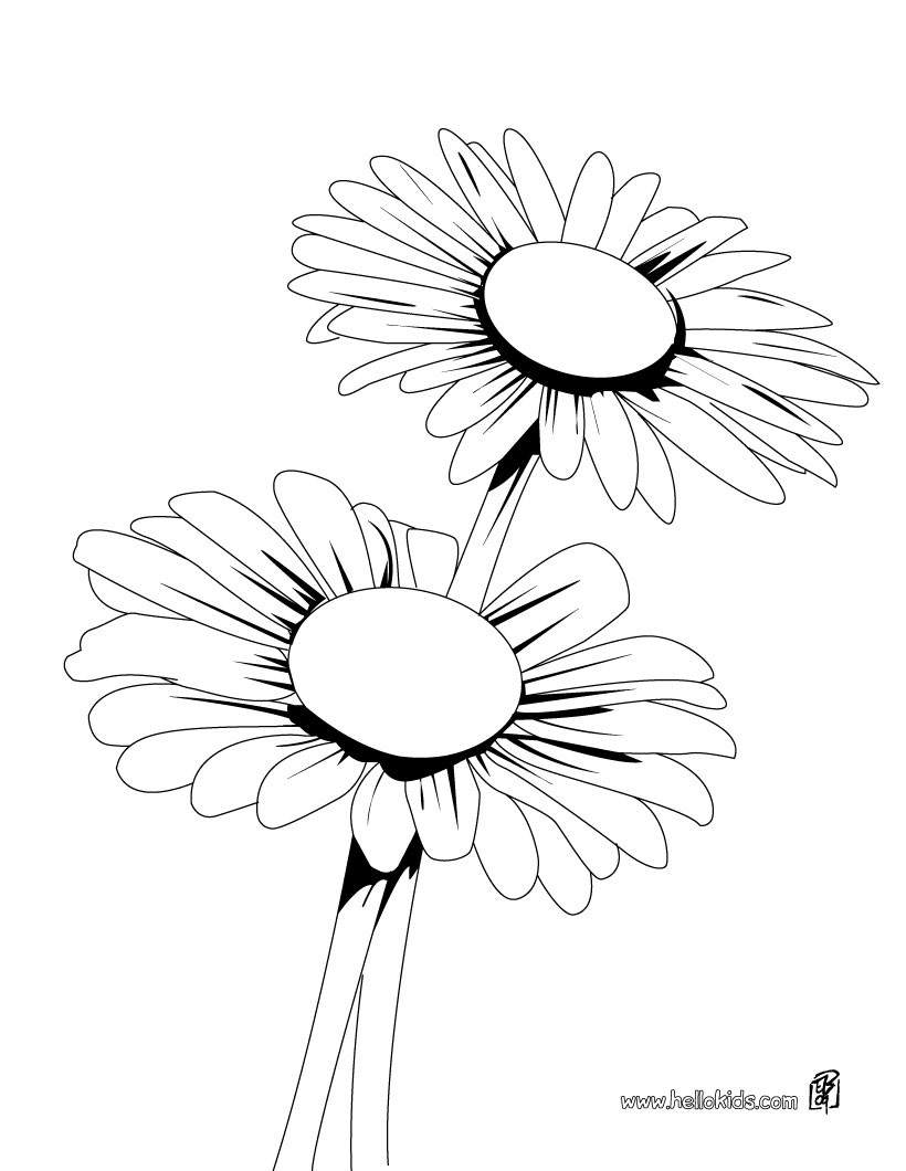 Daisy coloring #14, Download drawings