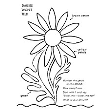 Daisy coloring #18, Download drawings