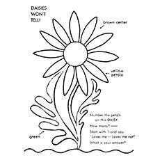 Gerbera coloring #3, Download drawings