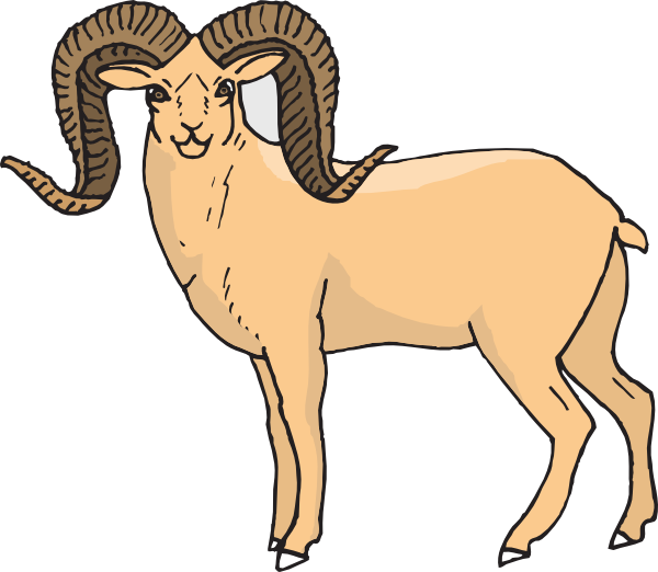 Dall Sheep clipart #19, Download drawings