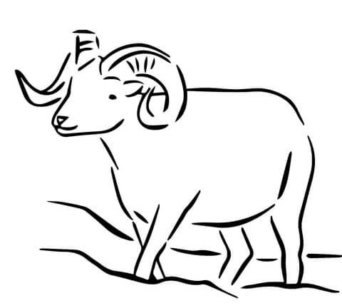 Dall Sheep coloring #18, Download drawings