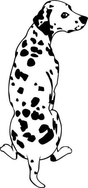 Dalmatian svg #3, Download drawings