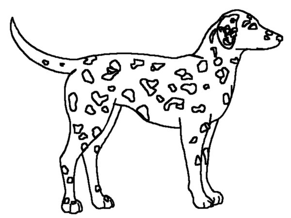 Dalmation coloring #16, Download drawings
