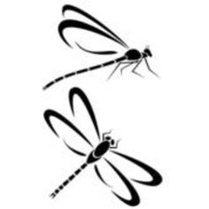 Damselfly clipart #8, Download drawings