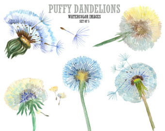 Dandelion clipart #14, Download drawings